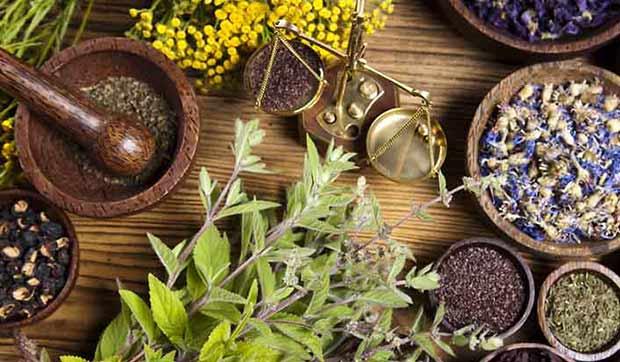 Gyógynövények a kozmetikumokban – igen vagy nem?